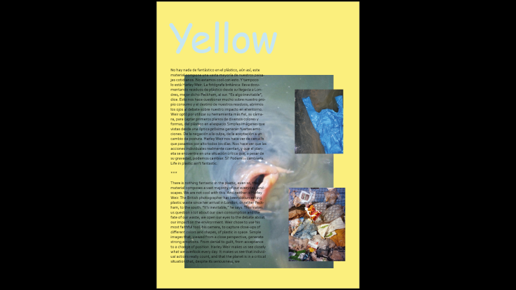 zine t1 yellow fish